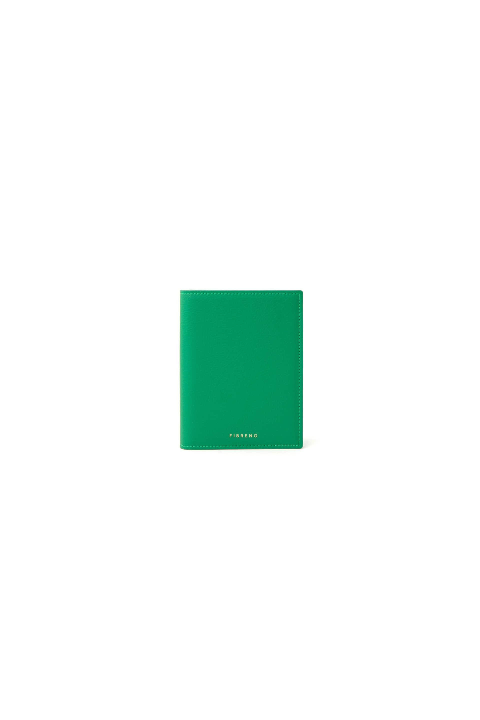 PASSPORT CASE 11 Tamani Green